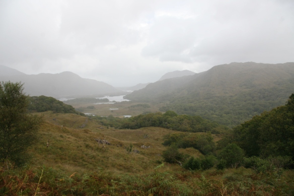 What the ladies viewed: the lakes of Killarney from Ladies' View. Yes, it was raining.