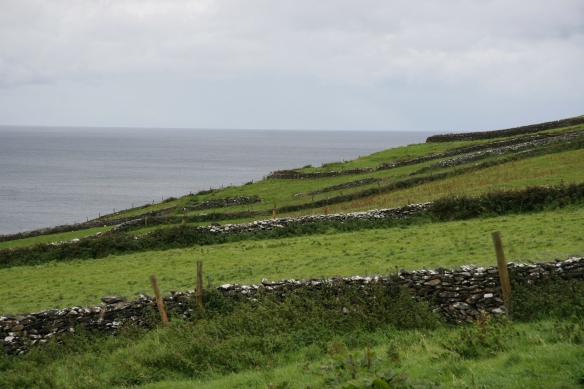 This gives you a little idea of how steep the climb is. These are the fields to the west of the fort.