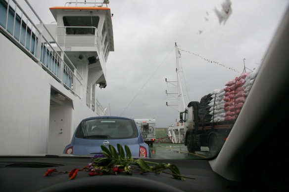 It was rainy, windy, and cold on the ferry; I didn't get out. That's my little collection of flora on the dash.