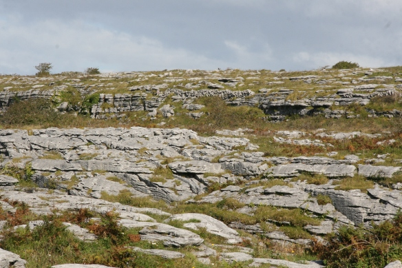 This is typical Burren landscape.