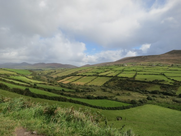 Dingle's velvet valleys look soft enough to touch. (Margaret's photo.)