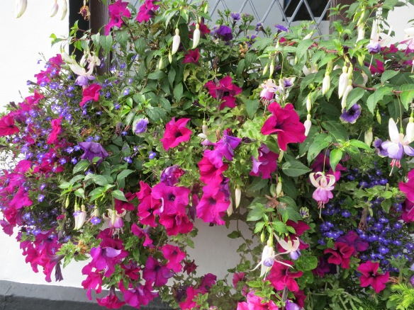 Outside we were struck by the stunning window baskets with petunias and fuchsias and that little blue flower. (Margaret's photo.)