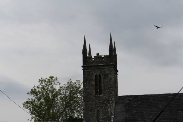 This is the tower of St. Caimin's Church of Ireland, after 10pm. That bird was perched on one of the spires; I got that shot, too, but I like this one.
