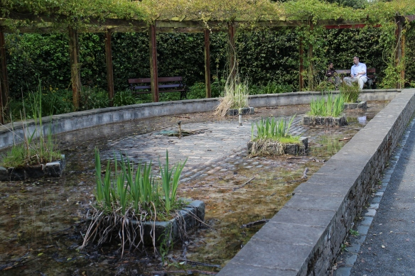 This is a raised pond in the summer months. Or perhaps it had been drained for maintenance.