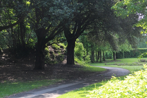 This is one of the parkland walks.