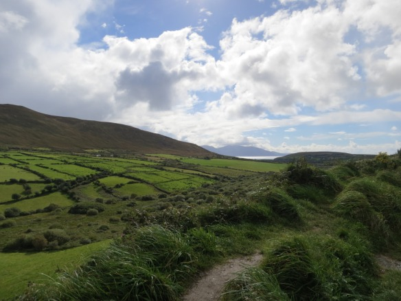 Dingle Peninsula, Co. Kerry (Margaret's photo)