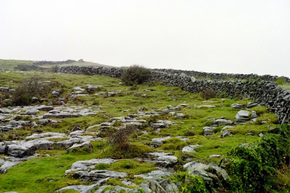 In the Burren, there are plenty of rocks for fences.