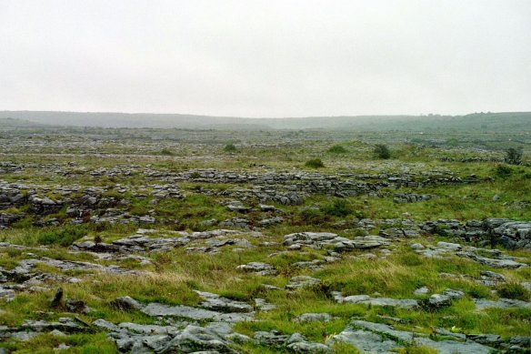 Not a particularly hospitable place, though, the Burren.