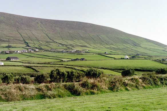 And in sight of Dunbeg, beautiful farmland. 2003.