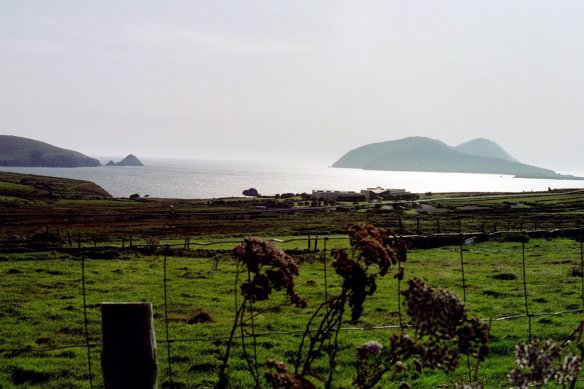 A different view of the Blaskets; that's the Blasket Centre in the distance beyond the fence, right on the edge of the water. It was a gorgeous day.