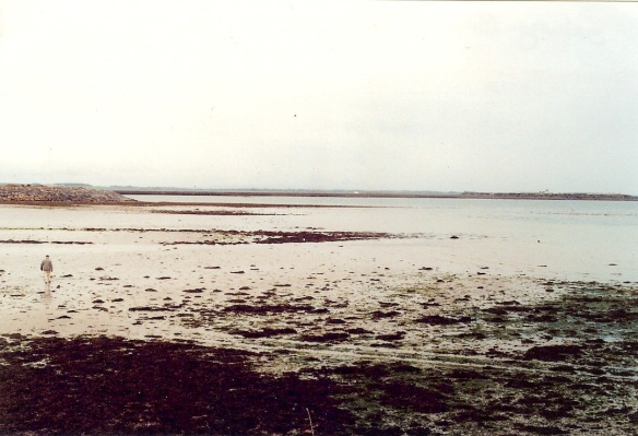 Galway Bay, just across from the B&B, at low tide, 2003. See the man in the lower left? He was walking a dog, which didn't make it into this shot.