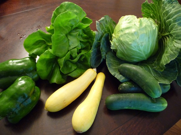 Bell peppers, lettuce, yellow squash, cucumbers, and cabbage.