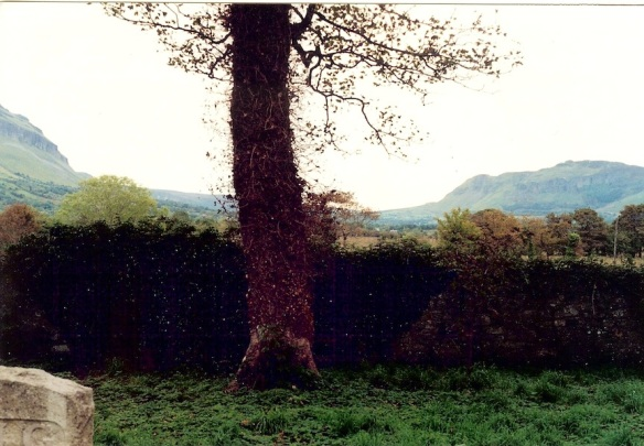 From the cemetery at St. Columba's Church in Drumcliffe, 2003.