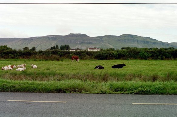 On the road to Sligo town, 2003.