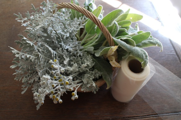 I piddled around taking photographs. Dusty miller, lambs' ears, and tulle.