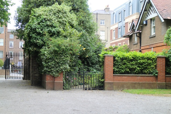 This is the Clonmel Street entrance. I don't know whose back garden that is, but it opens right into Iveagh Gardens!