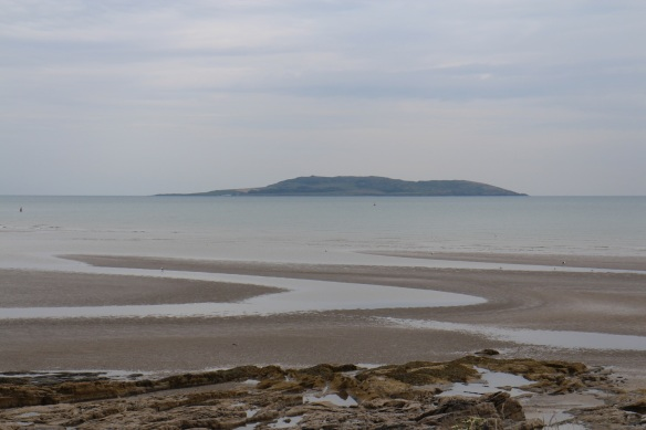 A view of Lambay Island, June 2015.