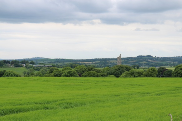 See that fragment of a tower? That's Monasterboice in the distance. I recognized it immediately.