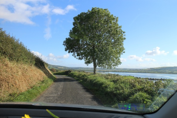 I mentioned the narrow roads, right? They're all like this.