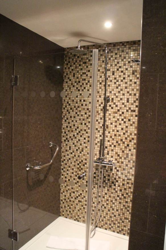 It was a deluxe bathroom too—this is only one feature of it.