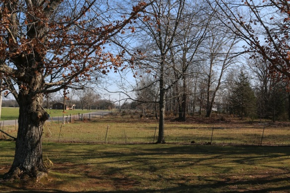 The side yard of the Lebanon Campground Church—looking back along Midland-Fosterville Road.