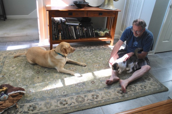 The ongoing familiarization process with Suzy and Bean. Gerry is so patient.